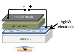 Organic-Solar-Cell-Architecture