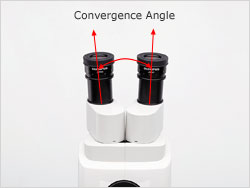 Observation Tube with Convergence Angle