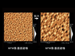 磁気力モード(MFM)2
