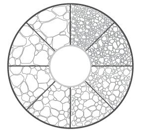 Exemplo de um retículo da ocular do microscópio usado para comparar o grão com uma imagem em tempo real
