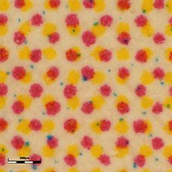 post card_ob3.6×z11×_contrast(white)