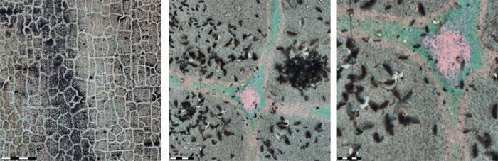 Fig4-visualising-copper-corrosion-x150-x2000-x4000